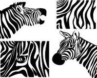 Zebra set Royalty Free Stock Images