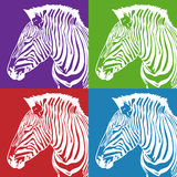 Zebra Set Royalty Free Stock Images