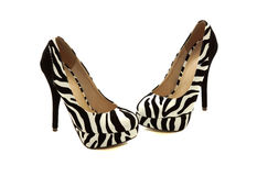 Zebra shoes with black heels. On a white background Stock Photos