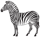 Zebra  silhouette Royalty Free Stock Photo