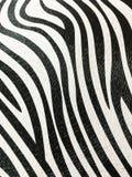 Zebra skin background. Stock Photos
