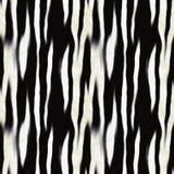 Zebra Skin Pattern Stock Photos