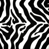 Zebra skin pattern Royalty Free Stock Photography