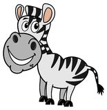 Zebra smiling profile Stock Photography
