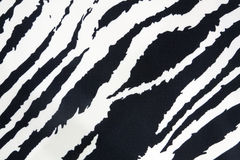 Zebra strip texture Royalty Free Stock Image