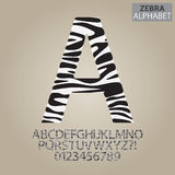 Zebra Stripe Alphabet and Numbers Vector Stock Photo