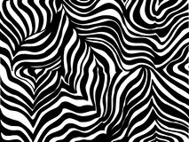 Zebra stripe background. Black and white Zebra stripe background vector Royalty Free Stock Images