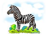 Zebra striped horse merry Savannah Royalty Free Stock Image