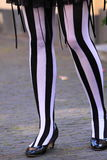 Zebra striped legs Stock Photography