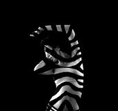 Zebra striped woman Stock Photo