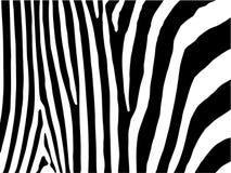 Zebra stripes background. Illustrated background of black and white zebra stripes Stock Photo