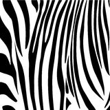 Zebra stripes pattern. Nature black and white abstract background, tribal ornament, vector royalty free illustration