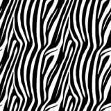 Zebra Stripes Seamless Pattern. Zebra print, animal skin, tiger stripes, abstract pattern, line background, fabric. Amazing hand d. Rawn illustration.Poster royalty free illustration