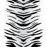 Zebra Stripes Vector Stock Images