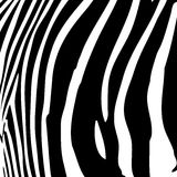 Zebra Stripes Vector Royalty Free Stock Image