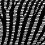 Zebra stripped mosaic vector background Stock Images
