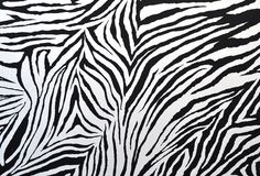 Zebra style fabric Royalty Free Stock Images