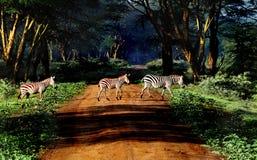 Zebra sulla strada Immagine Stock Libera da Diritti