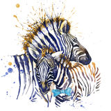 Zebra T-shirt graphics. zebra illustration with splash watercolor textured background. unusual illustration watercolor zebra fashi Royalty Free Stock Image