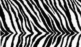 Zebra Textile Print Background Texture Royalty Free Stock Image