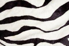 Zebra texture Stock Photos