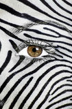 Zebra texture painted on face Stock Images
