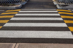 Zebra traffic walk way in the city Royalty Free Stock Images