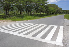 Zebra traffic walk way, cross way Royalty Free Stock Image