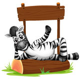 A zebra under the empty signboard Royalty Free Stock Photo