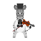 Zebra with violin Stock Photos