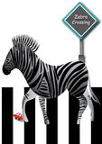 Zebra Crossing Road_eps Stock Photography