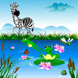 Zebra at the watering Royalty Free Stock Image