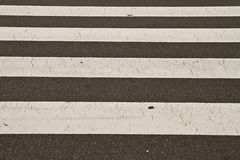 Zebra way Stock Photo