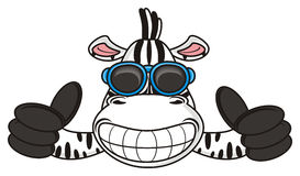 Free Zebra With Glasses Shows A Gesture Cool Royalty Free Stock Photos - 69629678