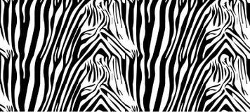 Zebra wzór Ilustracji