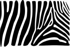 Zebrahaut Stockfotos
