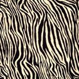 Zebrahautmuster Lizenzfreies Stockfoto