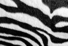 Zebrahautmuster auf Gewebe Stockfoto