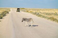 Zebramarkering väg som medelapprocahes fotografering för bildbyråer