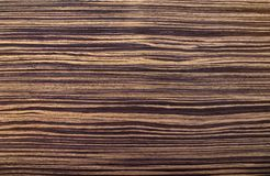 Zebrano. Zebrawood texture with dark and light stripes Royalty Free Stock Photography