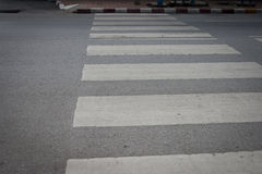 Zebrapad Stock Afbeelding