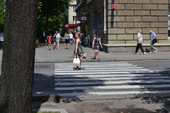 Zebrapad in de Oekraïense stad van Tcherkassy op een de zomerdag Stock Afbeelding