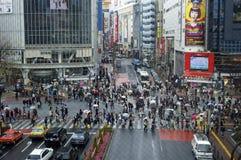 Zebrapad in Shibuya, Tokyo Stock Afbeeldingen
