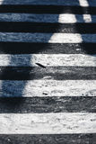 Zebrapaddetail, Straat Stock Foto