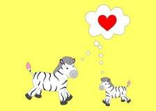Zebras Stockfotos