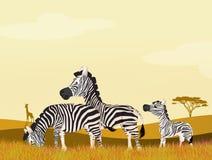 Zebras in African landscape. Illustration of zebras in African landscape Stock Image