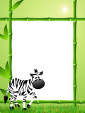 Zebras cartoon Royalty Free Stock Images