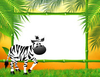 Zebras cartoon Royalty Free Stock Photos