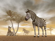 Zebras in the savannah - 3D render Royalty Free Stock Photography