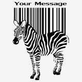 Zebraschattenbild Stockfoto